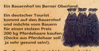 Ein bauernhof im Berner Oberland 1