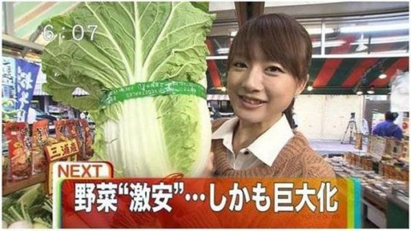 1.-Lettuce-The-Size-Of-A-Small-Child