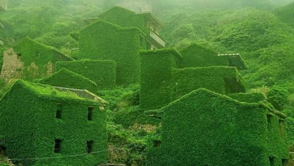 zöld házak