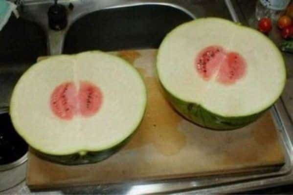 3.-Weird-Watermelon