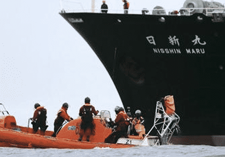 JAPANESE_WHALING_CREW_EATEN_ALIVE_BY_KILLER_WHALES_16_DEAD