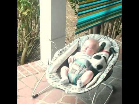 Wie dieser Pitbullwelpe auf das Baby reagiert ist zum Niederknien. Ist das süüüüüß!