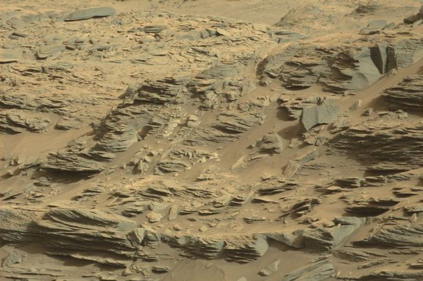 Alien-shelter-and-scorpion-found-on-Mars