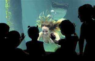 In this Wednesday, Jan. 8, 2014 photo, a model performs dressed as a mermaid at the Sao Paulo's aquarium in Sao Paulo, Brazil. The presentation runs daily as a special event to attract visitors during the January school vacations.(AP Photo/Andre Penner)