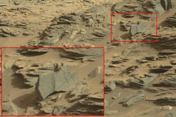 Alien-scorpion-found-on-Mar