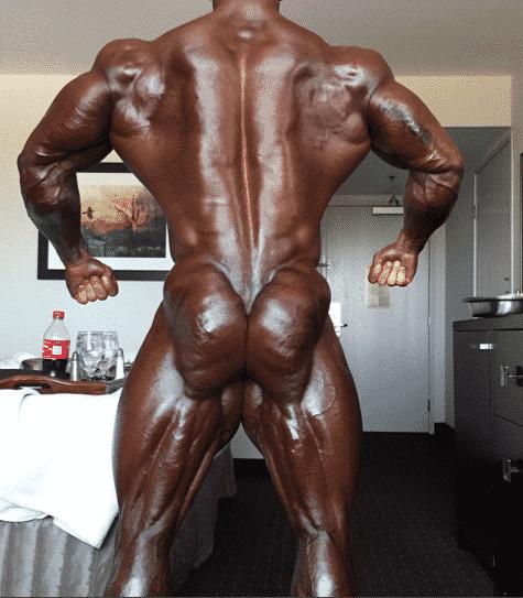 Info Mann Muskel xxx